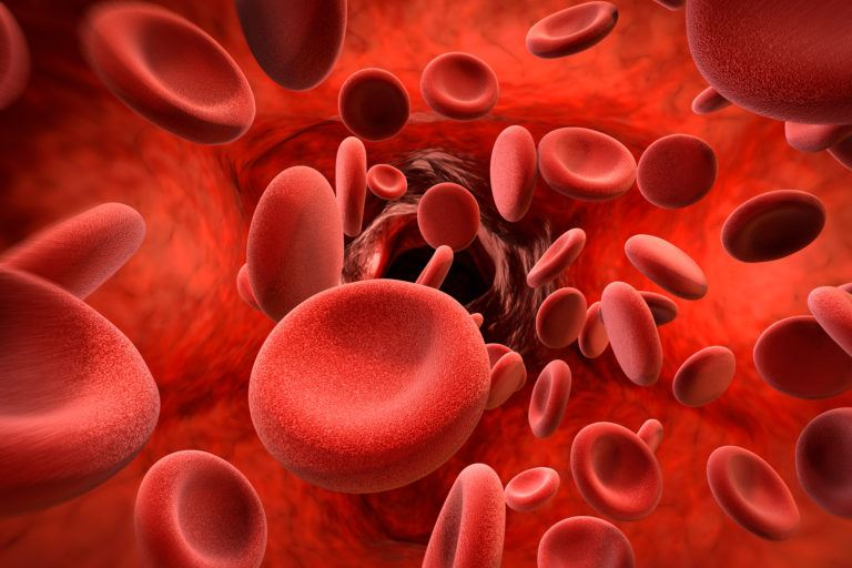 What are the major risk factors for Anemia?