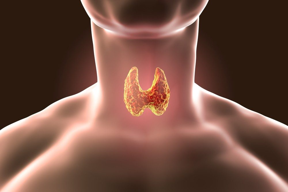 Thyroid Disorders Types Symptoms Causes And Treatments