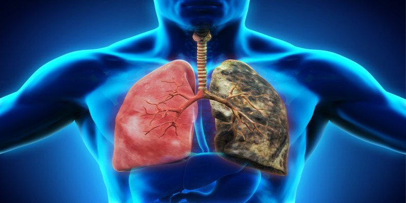 How smoking affects your lungs?