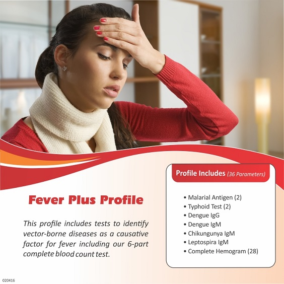 FEVER PLUS PROFILE