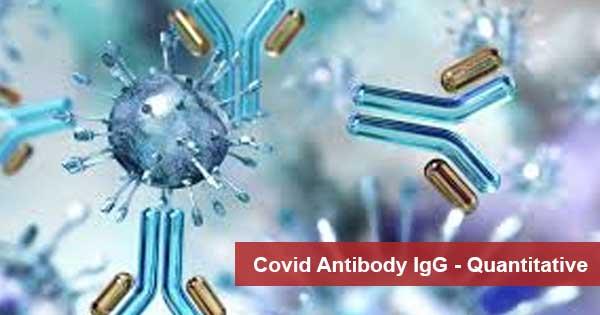 Covid Antibody IgG - Quantitative