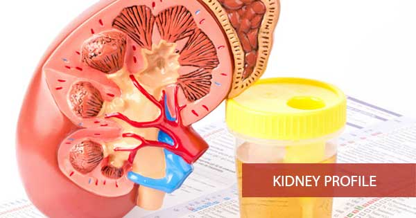 Kidney Profile - KIDPRO