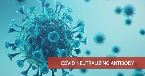 Covid Neutralizing Antibody